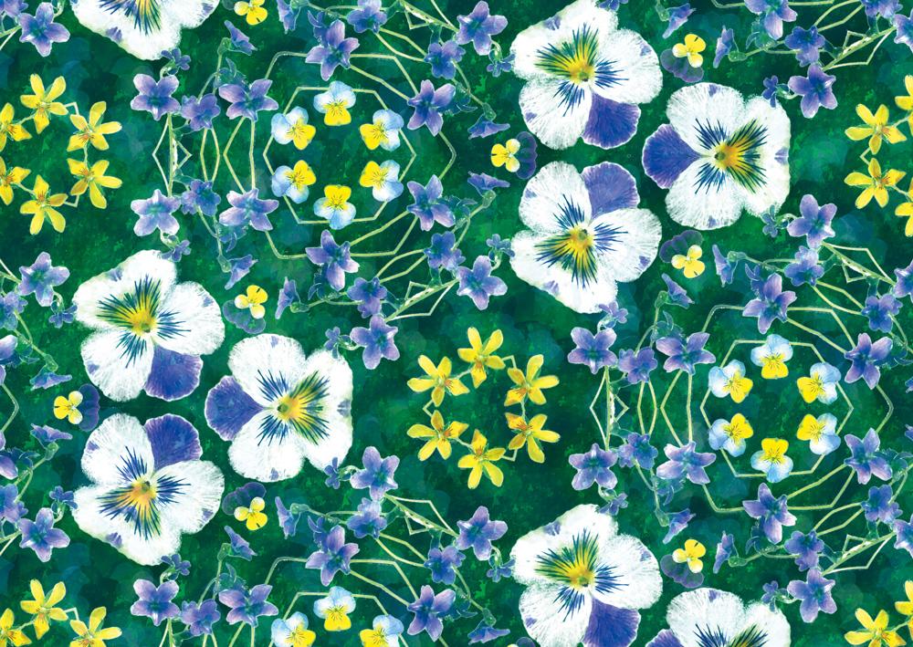 デザイン:ヒラメキオリジナル 「Viola blue」
