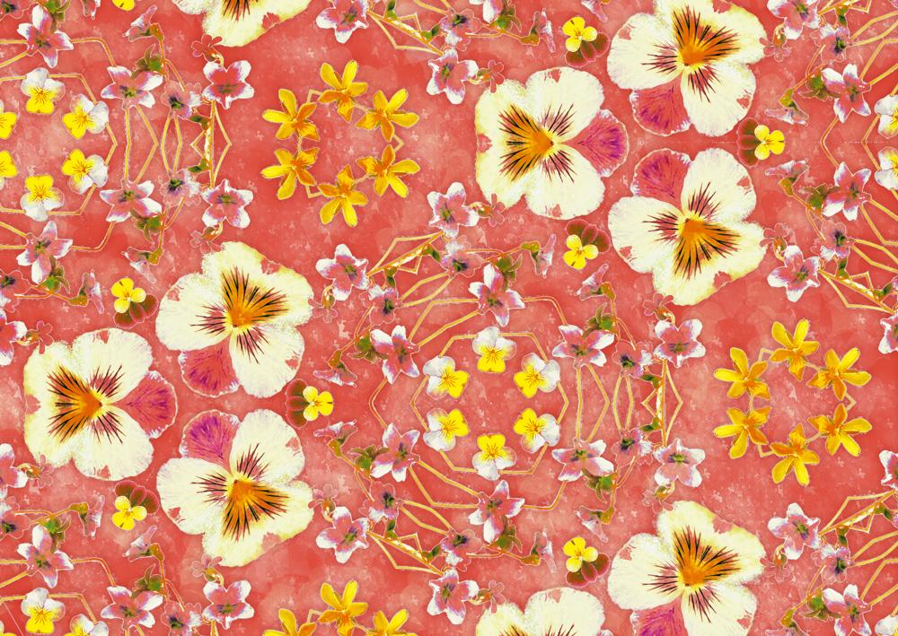 デザイン:ヒラメキオリジナル 「Viola pink」