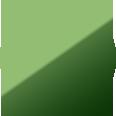 グリーンのカラーアイコン