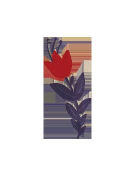レッドの花