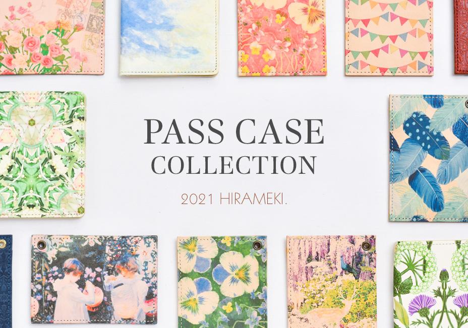 PASS CASE