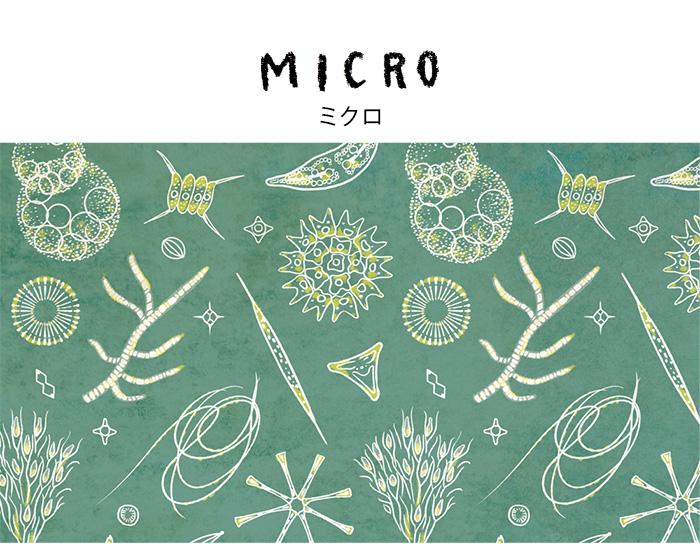 MICRO(ミクロ)デザインイラスト