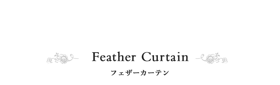 Feather curtain フェザーカーテン